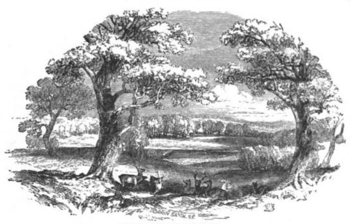 Richmond Great Park from The Tiber and the Thames, 1876